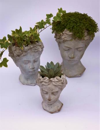 Goddess Planter Plant