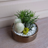 Gold Desert Planter