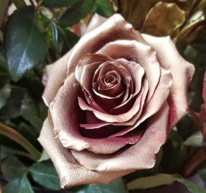Gold rose ROSE 1 DOZEN in Fairfield, CA | TERESITA FLORAL CREATIONS