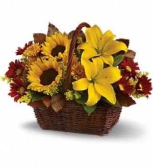 Golden Days  in Saint Marys, PA | GOETZ'S FLOWERS