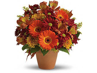 F100 - Golden Glow Arrangement