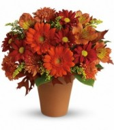 Golden Glow Fall Arrangement