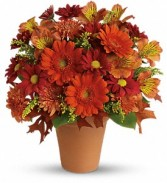 Golden Glow Fresh Floral Arrangement