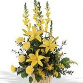 GOLDEN HORIZONS Floral Arrangement