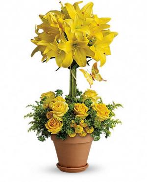 GOLDEN TOPIARY  Arrangement in Port Stanley, ON | FLOWERS BY ROSITA