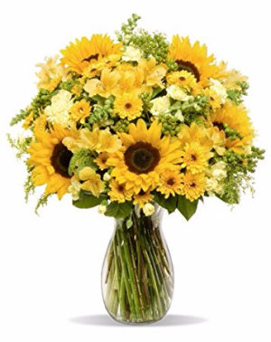 Good Morning Sunshine! Arrangement in Winston Salem, NC | RAE'S NORTH POINT FLORIST INC.