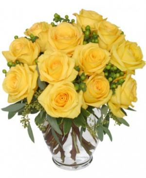 Good Morning Sunshine Roses Arrangement in Davis, CA | STRELITZIA FLOWER CO.