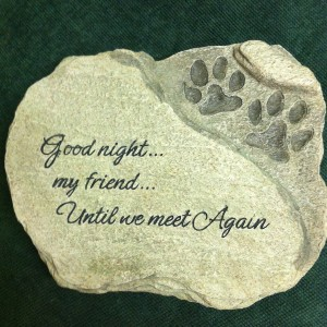 Good Night My Friend A Pet Remembered In Ware Ma Otto Florist Gifts