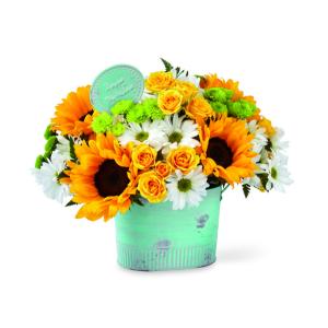 Goodbye Birthday Blues Happy Birthday Flowers in Warman, SK | QUINN & KIM'S FLOWERS