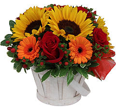 Goodness Basket - 333 Arrangement