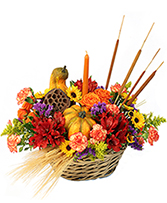 Gourd-eous Blooms Basket Arrangement in Calgary, Alberta | BEST OF BUDS