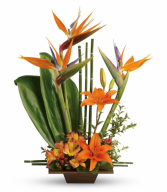 Graceful Bird of Paradise One-Sided Floral arrangement