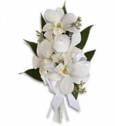 Graceful Orchids Corsage T196-6a  white dendrobium orchids