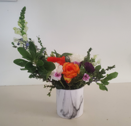 Gen-Gracious Charm flower colors may vary