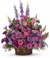 Gracious Lavender  H2351A