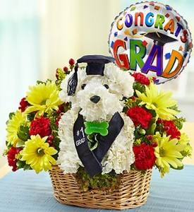 Graduation Dog-Able with Balloon