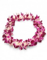 GRADUATION FLOWER LEI holiday