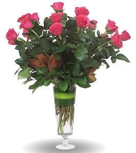 Grand Amore Hot Pink Roses