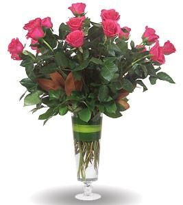 Grand Amore Hot Pink Roses