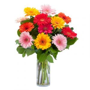 Grand Gerbera vase in Port Dover, ON | Upsy Daisy Floral Studio