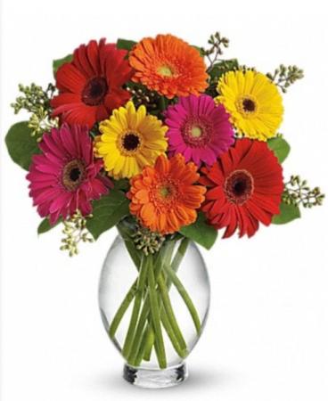 Grand Gerbra Vase