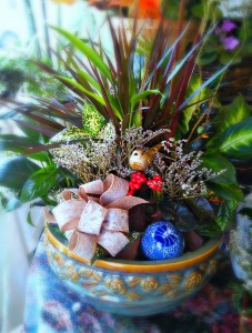 Grand Holiday Dish Garden  in Fair Lawn, NJ | Dietch's Florist