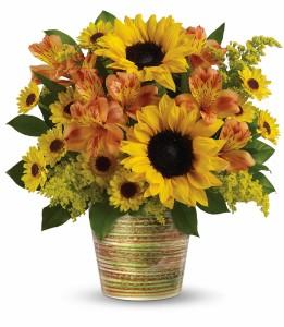 Grand Sunshine H14G100A in Henniker, NH | HOLLYHOCK FLOWERS