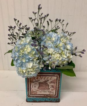 Grande Coffee Blues  in Easton, MD | ROBINS NEST FLORAL AND GARDEN CENTER