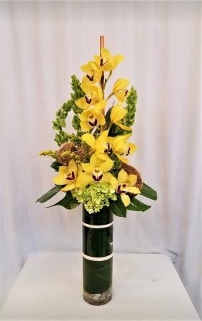 Cymbidium  Splendor Orchid Arrangement