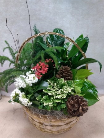Green and flowering plant basket