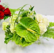 Green Anthurium Hearts Valentines