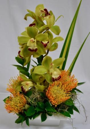 In The Tropics tropical arrangement