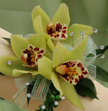 Green cymbidium orchid wristlet  Corsages
