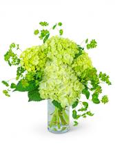 Green Glow Flower Arrangement