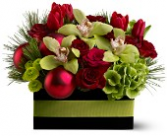 Green Orchid Christmas  One sided low arrangement