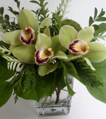 Green Orchid vase  Cube vase