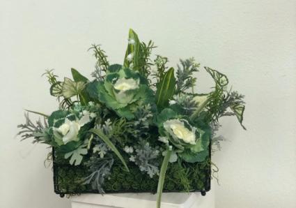 Green plant in chicken wire basket Silk Arrangement
