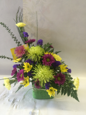 Green Spider Mum Floral Arrangement  in Red Lake, ON | FOREVER GREEN GIFT BOUTIQUE
