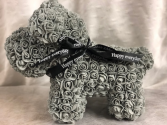 Grey Rose Dog