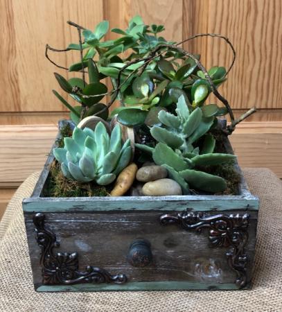 Vintage Succulent Garden T&V Original