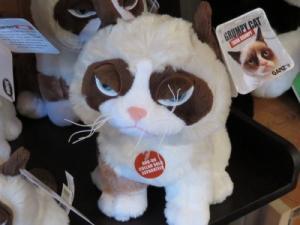 Grumpy Cat Plush in Bend, OR | ANA'S ROSE N THORN