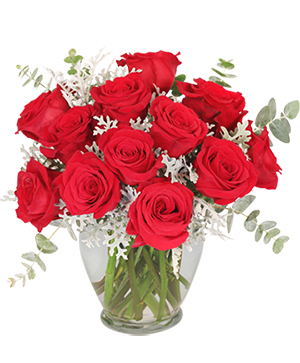 Guilty Pleasure Dozen Roses in Rowley, MA | COUNTRY GARDENS FLORIST