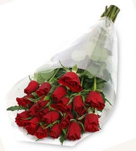 h1  Roses