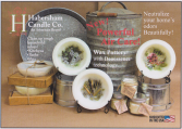 Habersham Candles Non Burning Scented Candles
