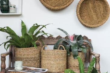 Hacienda  Baskets