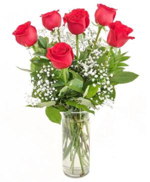 Half Dozen Red Roses Flower Arrangement in Richmond, VT | CRIMSON POPPY FLOWER SHOP