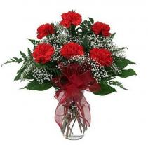 Half Dozen Carnations Vase Arrangement
