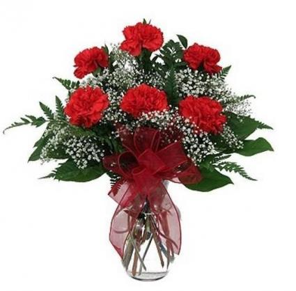 Half Dozen Carnations Vase Arrangement