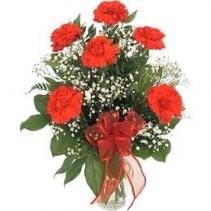 Half Dozen Carnations