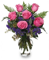 Half Dozen Pink Rose Bouquet Valentine's Day